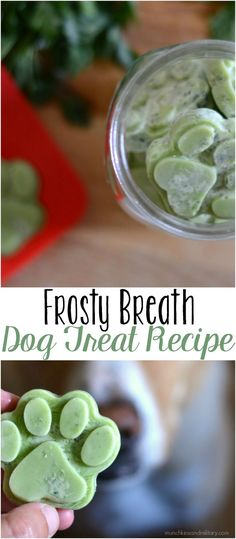 Breath Dog Treats A frozen dog treat with coconut oil and herbs to improve you dog's breath!A frozen dog treat with coconut oil and herbs to improve you dog's breath! Puppy Treats, Diy Dog Treats, Homemade Dog Treats, Dog Treat Recipes, Healthy Dog Treats, Dog Food Recipes, Frozen Dog Treats, Healthy Pets, Doggy Treats Recipe
