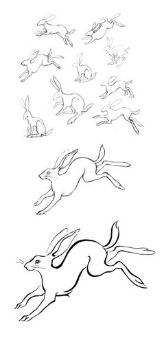 I was thinking maybe someday I'd get a tattoo of a wild rabbit, but I'm not sure how I'd pose/frame it yet. These sketches by Amy Holliday are lovely.