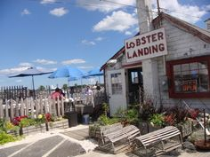 Lobster Landing (Clinton, CT) - need to go here this summer!