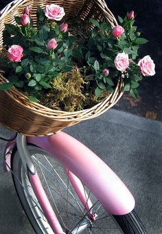 flower shopping except my beach cruiser is light blue <3