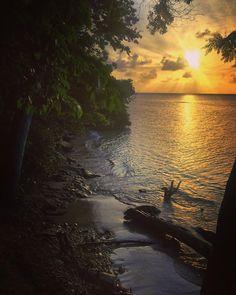 """#Madinina vue par @meinue: """"#ig_caribbean #instagood #sunset #seaside #nature #landscape #blacksand #green  #ig_martinique"""" #WeLike ! A voir sur Instagram : http://ift.tt/1YWoyHb"""