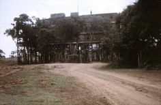 Tree Tops Hotel Nyeri 1969 East Africa, Kenya Africa, All About Africa, Tree Tops, Top Hotels, Historical Pictures, Colonial, Places Ive Been, Safari