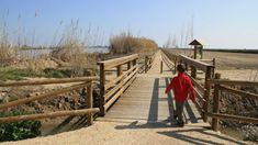 En bici resseguint l'Ebre de Sant Jaume d'Enveja fins l'Illa de Buda. Info. http://www.youmekids.com/bici-resseguint-ebre-sant-jaume-denveja-fins-illa-buda/