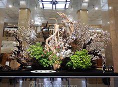 原流五世家元 小原宏貴氏の作品 山桜、板宿楓、野村楓、シャクナゲ、など Ikebana Arrangements, Flower Arrangements, Sogetsu Ikebana, Japanese Flowers, Hotel Lobby, Installation Art, Flower Art, Diy And Crafts, Wedding Flowers