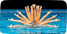 All types of synchronized swimming
