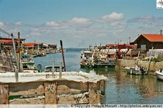 Port de Gujan-Mestras - Bassin d'Arcachon (France, Aquitaine, Gironde)