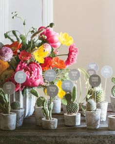 Barrel and prickly-pear cacti planted in small concrete pots can serve as both escort cards and favors