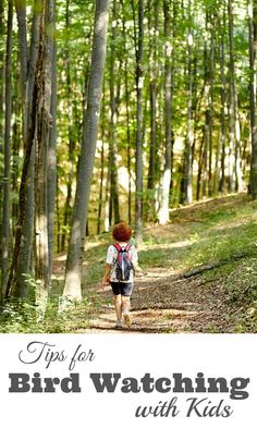 Tips for Bird Watching with Kids - We share tips to transform your next hike in the woods into a birding adventure. | Outdoor Play for Kids | Outdoor Learning |