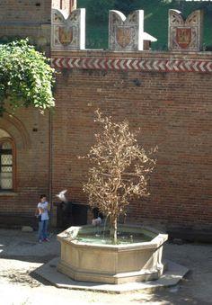 Torino: Borgo Medievale Fontana del melograno