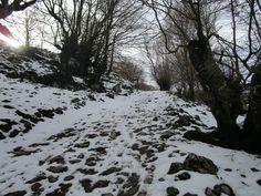 https://flic.kr/p/EiPsu2 | Nieve en Snta Bárbara de Gorriti (Navarra).
