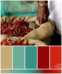 the dark brown really settles the colour palette and gives it a rich, earthy feel. inspiration photo in my desert and sky board: Scheme Color, Colour Pallette, Colour Schemes, Color Combos, Colour Palette Autumn, Tan Dining Rooms, Blue Living Room Decor, Living Room Color Schemes, Warm Colours Living Room