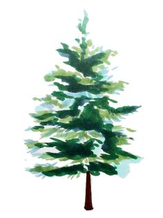 Spruce Trees with Copic Markers