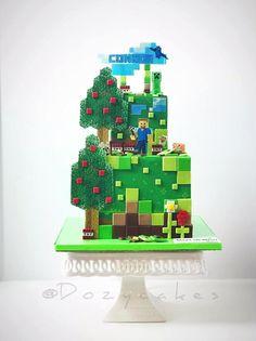 Minecraft for Make-a-Wish by Dozycakes