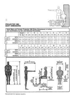 Body dimensions 2   Human Dimension & Interior Space, Julius Panero & Martin Zelnik