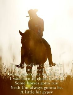 My envy is people with TONS of animals. Especially horses. I LOVE horses. If we had enough money I would continue in horseback riding! I wish horseback riding could be cheap:( Cowgirl And Horse, Horse Love, Cowgirl Quote, Pretty Horses, Beautiful Horses, Beautiful Sunset, Paint Horse, Equestrian Quotes, Country Girl Quotes