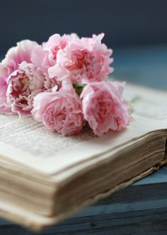 book and roses