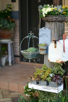 Potted garden - use a variety of pot/planter types and heights to add interest.