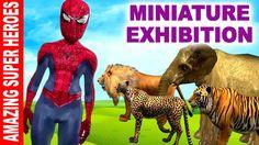 Spiderman Hulk Batman at Miniature Exhibition   Superheroes Fun with Veh...