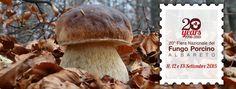 Briciole di Sapori: Fiera Nazionale del Fungo Porcino. 11, 12 e 13 set...