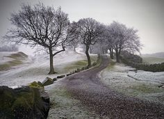 December at the Antonine Wall, Scotland | Edge of an Empire --- by kenny barker…