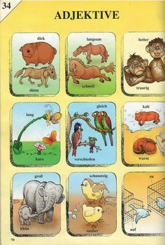 Adjektive German Grammar, German Words, German Language Learning, Learn A New Language, German Resources, Deutsch Language, American Sign Language, English Vocabulary, Kindergarten