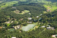 Inhotim - Brumadinho, MG, Brasil | #minasgerais #brasil #brazil