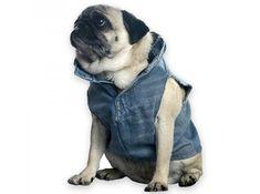 doggie-vest