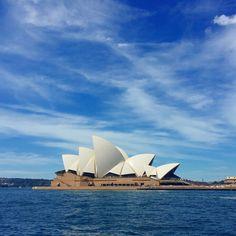 Spring has truly Sprung over Sydney #operahouse #ilovesydney #springinsydney #australia