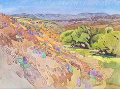 "Wildflowers at Pescado Ravine by Carolyn Lord Watercolor ~ 11"" x 15"""