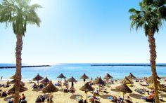 Teneriffa on Kanariansaarista vihrein ja kaunein – kuin tehty mieleenpainuvia kokemuksia varten!  www.apollomatkat.fi #Teneriffa #Espanja Tenerife, Apollo, Camel, Dolores Park, Beach, Outdoor, Animals, Smuk, Santa Cruz