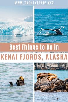 Your guide for planning the ultimate weekend in Alaska getaway! Plan the perfect 2 day Alaska vacation with this road trip itinerary in the Kenai Peninsula. Here is where to go whale watching, why to visit Homer Spit, and where to get the best Alaska glacier views. | Alaska travel | Alaska guide | Kenai Peninsula guide | Alaska Wildlife | Alaska Photography | Alaska Travel Summer | Alaska Travel Fall | Alaska Getaway