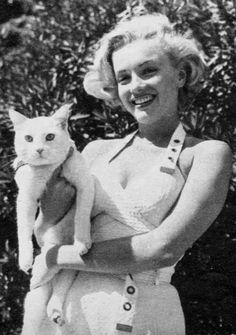 Marilyn Monroe e sua gata.