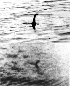 67 Best The Loch Ness Monster images in 2018 | The loch, Loch ness