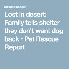 Lost in desert: Family tells shelter they don't want dog back • Pet Rescue Report