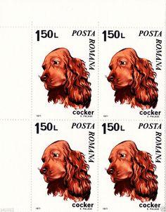 Romania Stamp Block 1971,COCKER,Michel nr.2912,Beautiful Block,NO RSV !