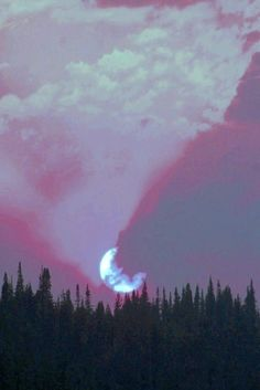 Image de moon, grunge, and sky Soft Grunge, Pastel Grunge, Grunge Look, Grunge Girl, 90s Grunge, Grunge Style, Grunge Outfits, Purple Aesthetic, Aesthetic Grunge