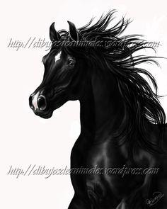 Dibujo digital de caballo árabe negro
