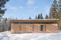 4-season-timber-cottage-built-by-single-carpenter-5-rear.jpg