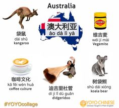 G'day, Australia! 你好澳大利亚 (nǐ hǎo ào dà lì yà)! Learn these Chinese words from Down Under with today's YOYOcollage. This has got us wondering: what does Vegemite actually taste like? :)