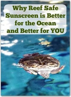 When looking for sunscreen, reef safe is not only better for the ocean, it is better for you too