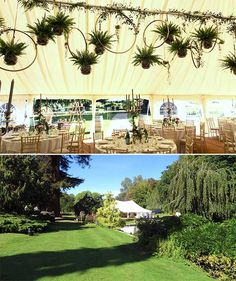 A wedding marquee with a novel take on the fashionable hanging greenery look Marquee Wedding, Tent Wedding, Wedding Decorations, Hanging Decorations, Wedding Ideas, Hanging Baskets, Surrey, Ferns, Greenery
