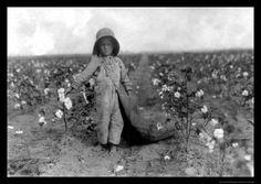1916 Boy Picking Cotton in COMANCHE Oklahoma