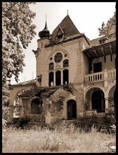 Abandoned Spitzer Castle in Beocin, Serbia. Built in 1898 by the Spitzer family. Now falling apart from neglect.