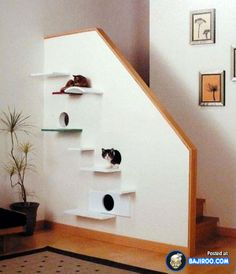 amazing creative unusual pets friendly furniture designs interionr ideas pics images pictures photos 27 41 Pictures Of Awesome Pet Friendly Furniture