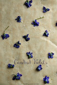 candied violets | healthy green kitchen