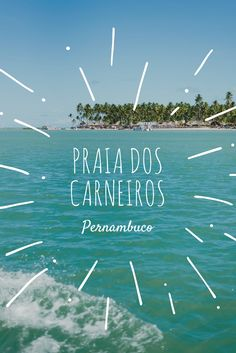 Dicas de viagem para a Praia dos Carneiros em Tamandaré, Pernambuco: uma das praias mais lindas do Brasil. Passeio de catamarã e banho de argila.