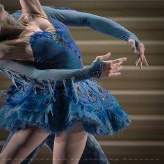 Sleeping Beauty - Princess Florine and Bluebird