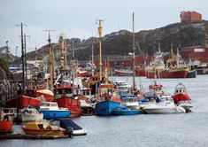 Greenland (1) The Port of Nuuk - Slim... | The Khooll