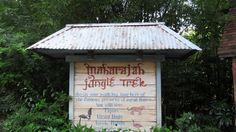 Galerie de photos du Maharajah jungle trek à Disney's Animal Kingdom, un sentier que l'ont peut parcourir pour voir divers animaux. En prime, la balade se fait dans un décor de jungle et d'un vieux pa…