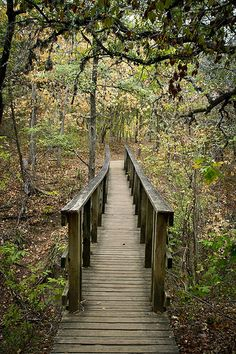 McKinney Falls State Park, Texas {Outdoors enthusiasts find miles of trails, campgrounds, picnic areas and spectacular waterfalls in the 635-acre park}